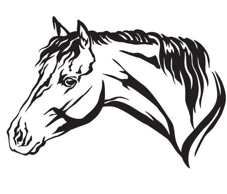 Ilustración de Decorative portrait in profile of Welsh Pony, vector isolated illustration in black color on white background. Image for design and tattoo. - Imagen libre de derechos