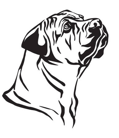 Illustrazione per Decorative outline portrait of Boerboel Dog looking in profile, vector illustration in black color isolated on white background. Image for design and tattoo. - Immagini Royalty Free