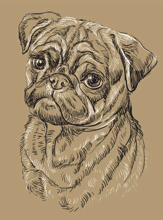 Ilustración de Pug vector hand drawing black and white illustration isolated on beige background - Imagen libre de derechos
