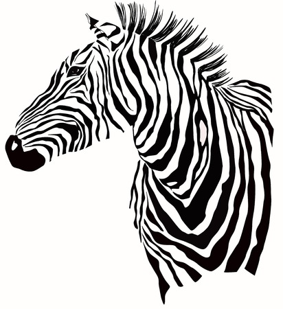 Illustration pour Animal illustration of zebra silhouette - image libre de droit