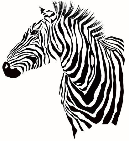 Illustration for Animal illustration of zebra silhouette - Royalty Free Image