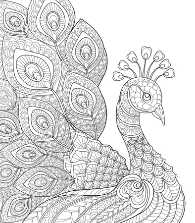 Illustration for Peacock. Adult antistress coloring page. Black and white hand drawn doodle for coloring book - Royalty Free Image