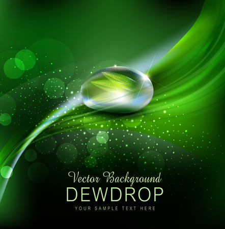 Vector green background with leaves and dew drops on the dark background