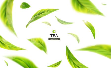 Ilustración de Vector 3d illustration with green tea leaves in motion on a white background. Element for design, advertising, packaging of tea products - Imagen libre de derechos