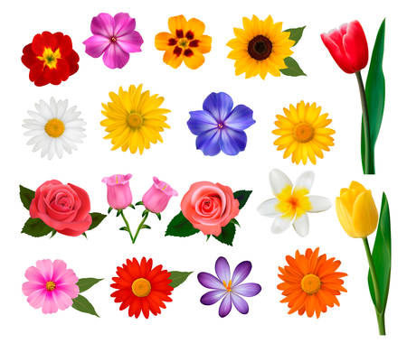 Ilustración de Big collection of colorful flowers. Vector illustration. - Imagen libre de derechos
