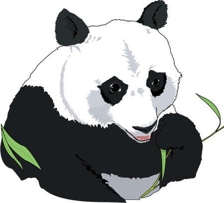 Illustration pour Giant Panda Illustration - image libre de droit