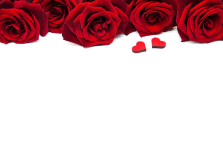 Foto de Fresh Red roses on a white background - Imagen libre de derechos