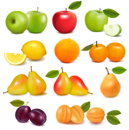 Photo for Big group of different fresh fruit  Vector  - Royalty Free Image
