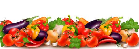 Banner made of fresh colorful vegetables  illustration