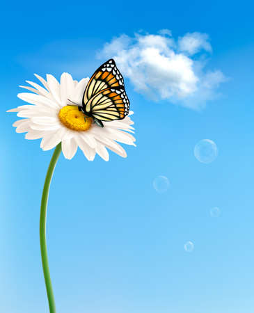 Illustration pour Nature spring daisy flower with butterfly.  Vector illustration.  - image libre de droit