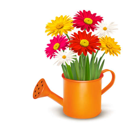 Colorful fresh spring flowers in orange watering can. Vector illustration