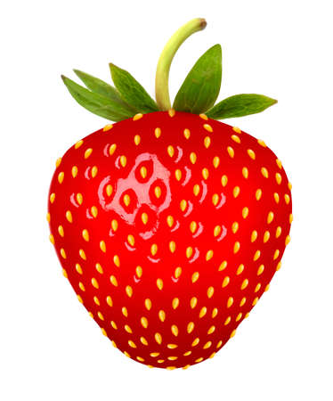 Illustration for Strawberry. Vector. - Royalty Free Image