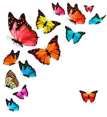 Illustration pour Background with colorful butterflies. Vector. - image libre de droit