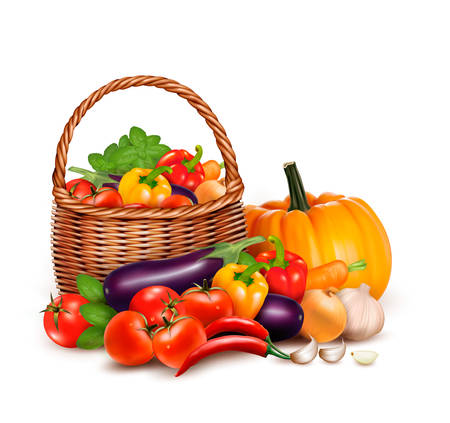 A basket full of fresh vegetables. Vector background.