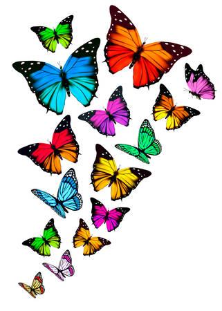Ilustración de Background with colorful butterflies. Vector. - Imagen libre de derechos
