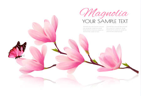 Illustration for Flower background with blossom branch of pink magnolia and butterfly. Vecto - Royalty Free Image