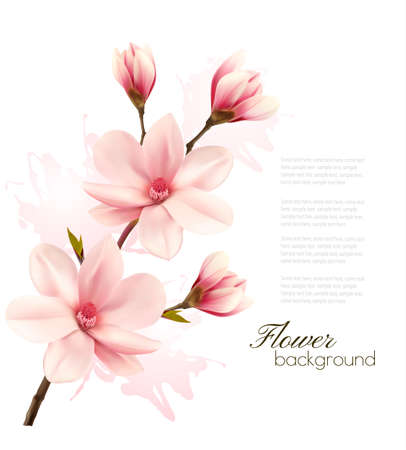Illustration pour Spring background with blossom brunch of pink flowers. - image libre de droit