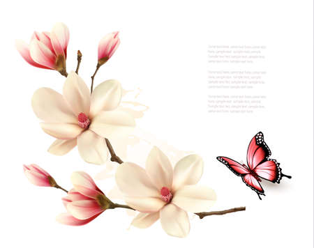 Ilustración de Beautiful white magnolia branch with a butterfly. Vector. - Imagen libre de derechos