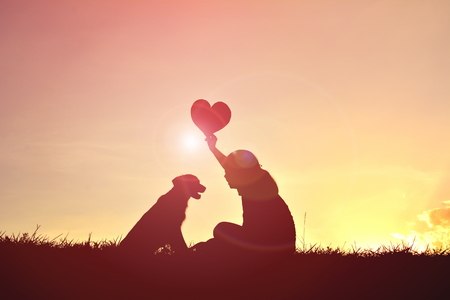 Silhouette women playing with dog at sunset