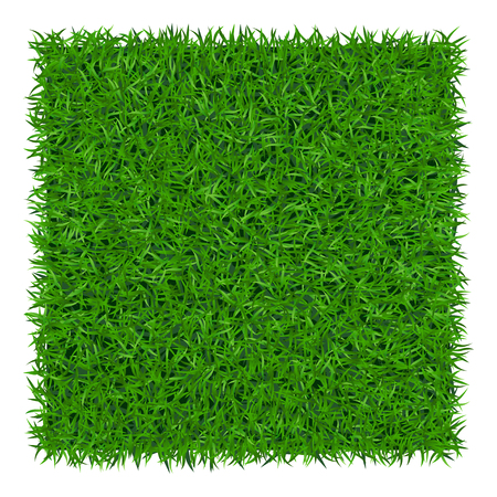 Illustration pour Green grass background. Lawn nature. Abstract field texture. Symbol of summer, plant, eco and natural, growth or fresh. Design for card, banner. Meadow template for print products. Vector Illustration - image libre de droit