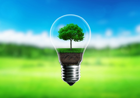 Foto de Green seedlings in a light bulb alternative energy concept, green blurred background. - Imagen libre de derechos