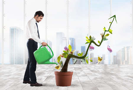 Photo pour Businessman watering money coins as if they were plants - image libre de droit