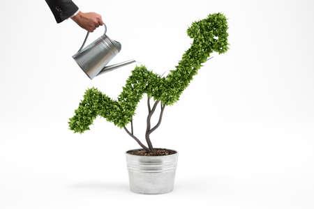 Foto de Businessman watering a plant that grows like an arrow . 3D Rendering - Imagen libre de derechos