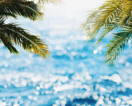 Photo for Tropical beach with coconut tree and bright sea - Royalty Free Image