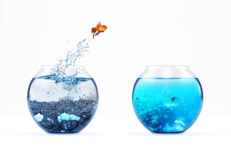Photo pour Improvement and moving concept with a goldfish jumping from a dirty aquarium to a clean one - image libre de droit