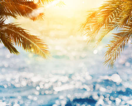 Photo for Tropical beach with coconut tree on sunset - Royalty Free Image