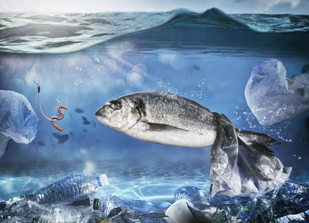 Photo pour Trapped fish by a floating bag. Problem of plastic pollution under the sea concept - image libre de droit