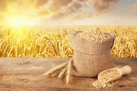 Photo for wheat ears and grains on table - Royalty Free Image