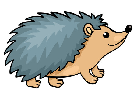 Photo pour Hedgehog isolated on white.  - image libre de droit