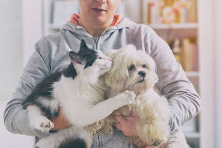 Foto de Pet owner with dog and cat at home - Imagen libre de derechos
