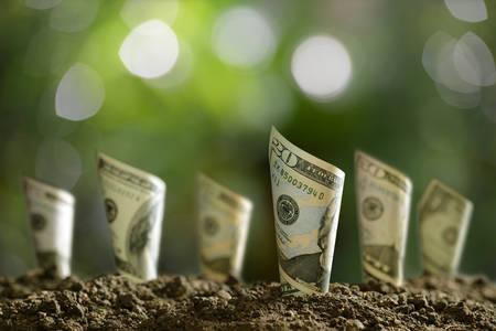 Foto de Image of rolled bank notes on soil for business, saving, growth, economic concept - Imagen libre de derechos
