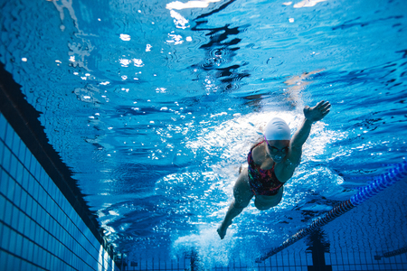 Photo pour Underwater shot of young woman swimming the front crawl in pool. Fit female athlete swimming in pool. - image libre de droit
