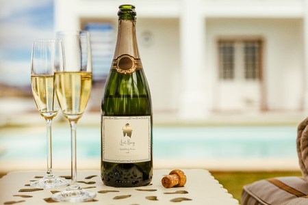 Photo pour Two glasses of wine with bottle of sparkling wine on a table at the pool side - image libre de droit