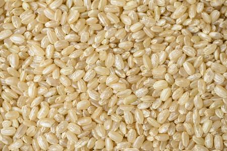 Photo pour Brown rice - image libre de droit