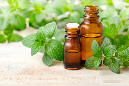 Photo for fresh peppermint leaves and Peppermint essential oil in the amber glass bottle - Royalty Free Image