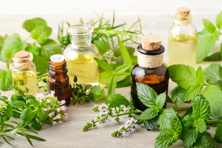 Photo for fresh herbs and massage oils on the wooden board - Royalty Free Image