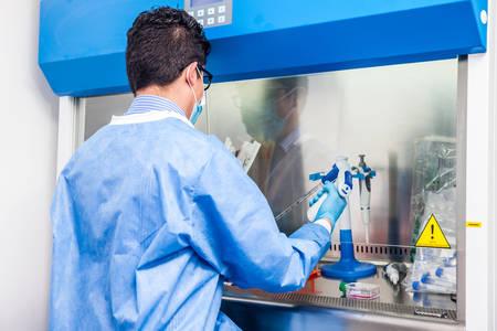 Foto de Young scientist working in a safety laminar air flow cabinet at laboratory - Imagen libre de derechos