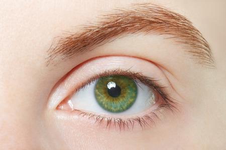 Foto de Human green healthy eye macro - Imagen libre de derechos