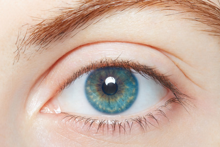 Photo for Human blue healthy eye macro - Royalty Free Image
