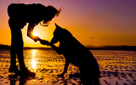 Photo for Hipster girl playing with dog at a beach during sunset, silhouettes with vibrant colors - Royalty Free Image