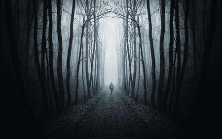 man walking on a path in a strange dark forest with fog