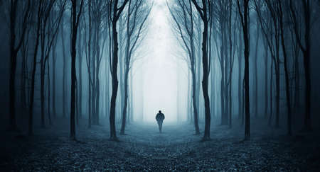 Man walking in a dark forest with fog and trees