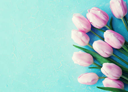 Photo for Purple tulips over blue background - Royalty Free Image