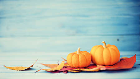 Photo for Pumpkins and autumn leafs over turquoise wood - Royalty Free Image