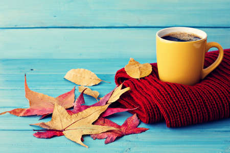 Coffee cup over red scarf and autumn leafs