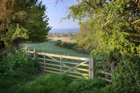 View over farm gate towards pretty English countryside, Cotswolds, England
